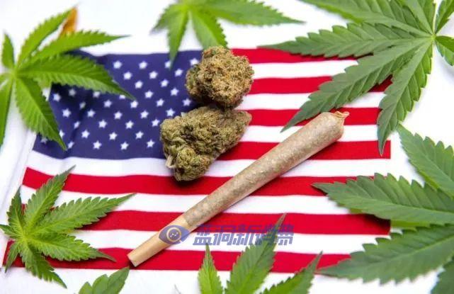 2021年,美国还有4个州即将大麻合法化