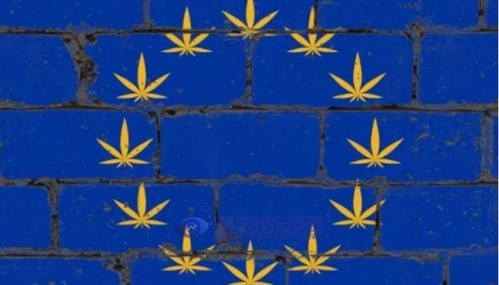 重大突破!大麻萜酚CBG被列入欧盟化妆品添加成分